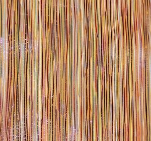 Оранжевые полосы