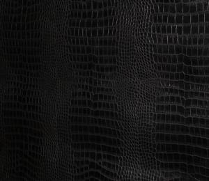 черный крокодил